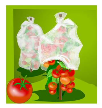 Lindner-Gartenfolien2